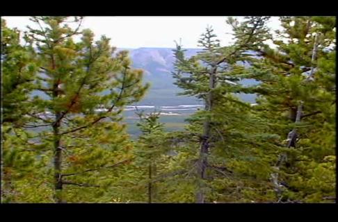 Elk Hunt with Bob Foulkrod in British Columbia