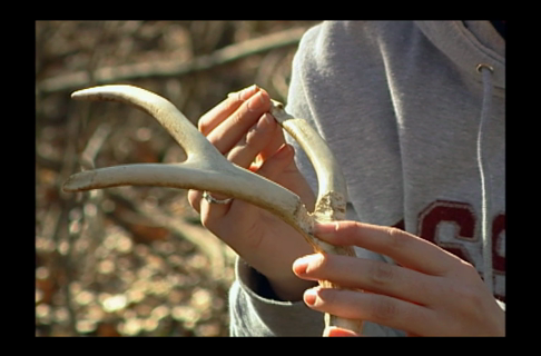 Shed Hunting Basics & Tips