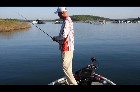 Sight Fishing Part 2: Reading a Fish