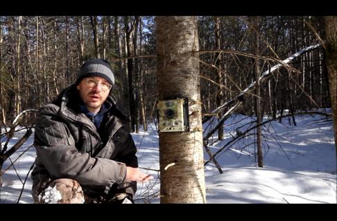 Trail Camera Tips and Tactics