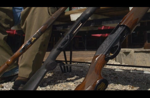 Pick the Perfect Shotgun for Upland Bird Hunting