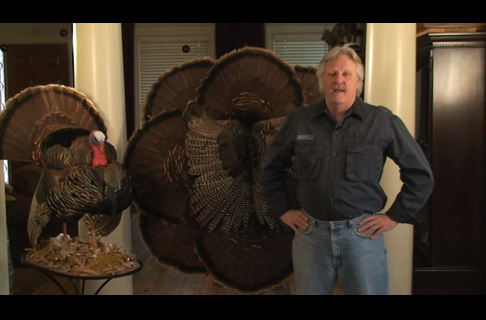 How to Make a Large Turkey Wall Hanging