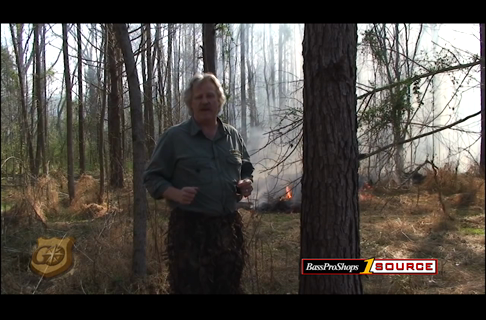 How To Execute A Controlled Burn to Enhance Wildlife Habit