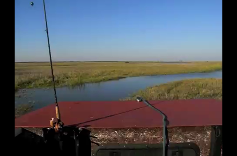 Texas Airboat Ride
