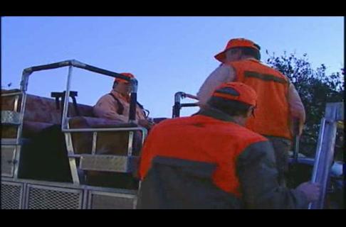 Texas Bobwhite Quail Hunting