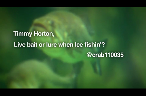 Timmy Horton on Ice Fishing Bait. Live or Lure?