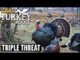 E4: Triple Threat | Cabela's Turkey Roost