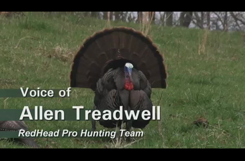 Bag Your First Gobbler Using these Spring Turkey Hunting Basics