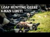 Hunting Geese on Ponds: Cabela's