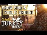 E9: Snow Bird & Public Land l Cabela's Turkey Roost