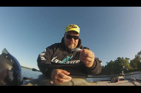 Livingston Lures Dive Master JR for Smallmouth