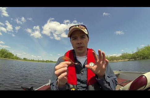 Tips for Fishing Bucktail Jigs