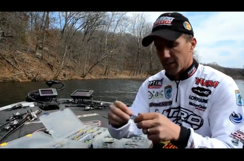 Edwin Evers - Prespawn Jerkbait Colors