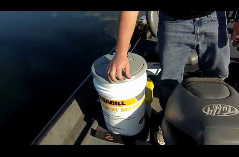 Keeping Your Minnows Alive in Frabill Bait Stations