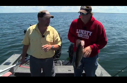 Fish Ed, Clear Water Mille Lacs Walleyes