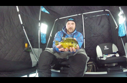 Draw Blue Gills in With Rattle Baits