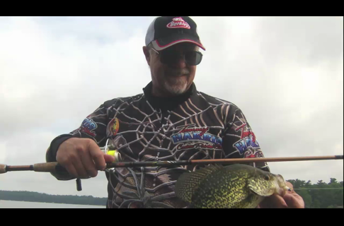 Crappies on Gulp Alive Minnow Grubs