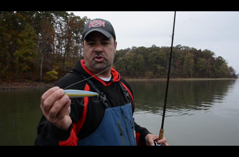 Zona's Tip: Use Braided Line for Topwater