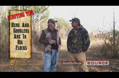 Introduction to Spring Turkey Scouting Tactics