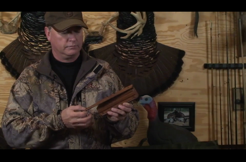 How to Make a Turkey Hen Cluck on a Box Call