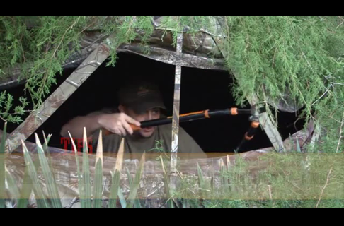 How to Brush in a Ground Blind