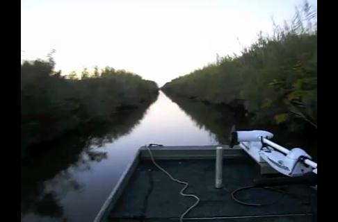 Bayou Dawn Patrol Boat Ride