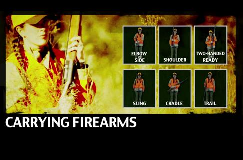 Safe Firearm Carries